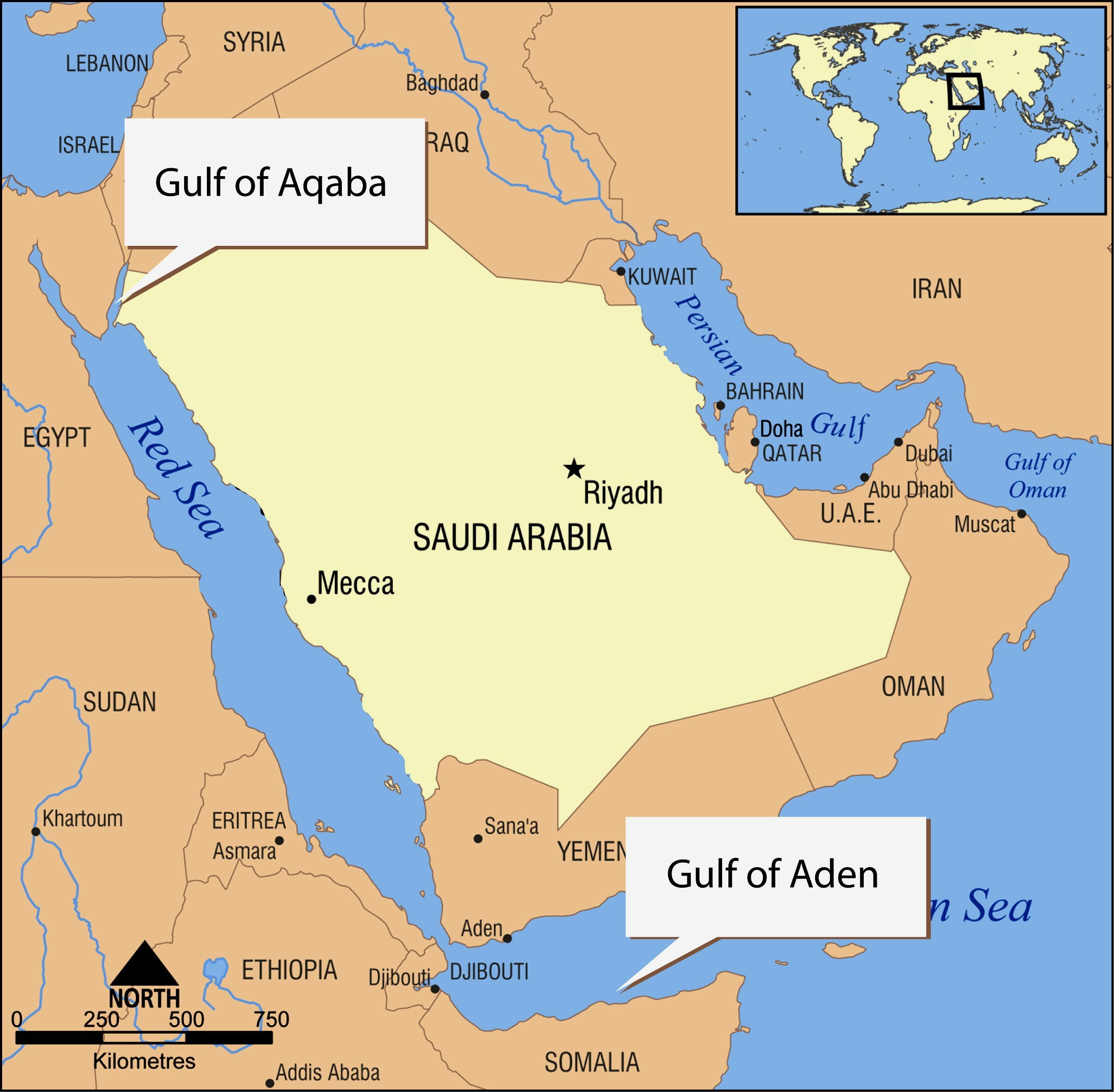 Middle East car market I Half 2012 Outlook. The fight is between ...